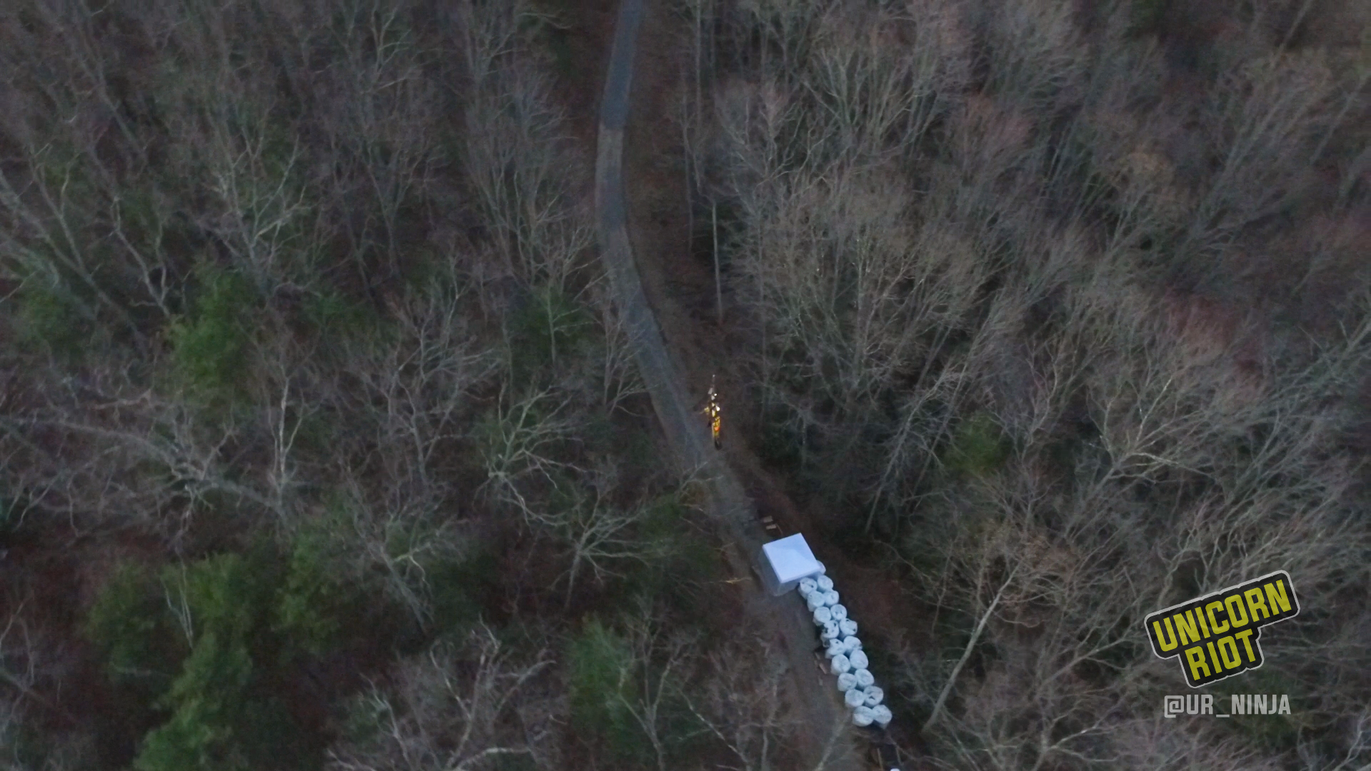 Appalachian Forest Blockades Disrupt Mountain Valley Pipeline