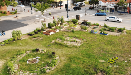 image: an overhead shot of the Lake Street Open Growth Space showing garden beds around the perimeter beside 17th avenue and Lake street. To the left of the photo there is a circular garden with herbs and medicinal plants planted alongside flowers around a plum tree. Across Lake street is a local Panaderia / Tortilleria.